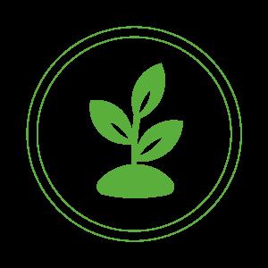 Aspipoux une solution antipoux sans pesticide